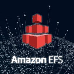 EFS 서비스의 Provisioned Throughput 모드 이해하기